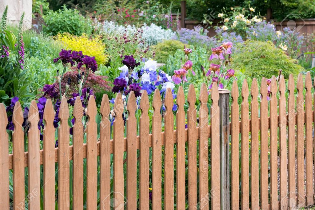 This image has an empty alt attribute; its file name is 102251775-wood-picket-fence-in-backyard-colorful-flower-garden-in-spring-season-1024x682.jpg